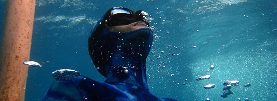 Apnoea and Freediving